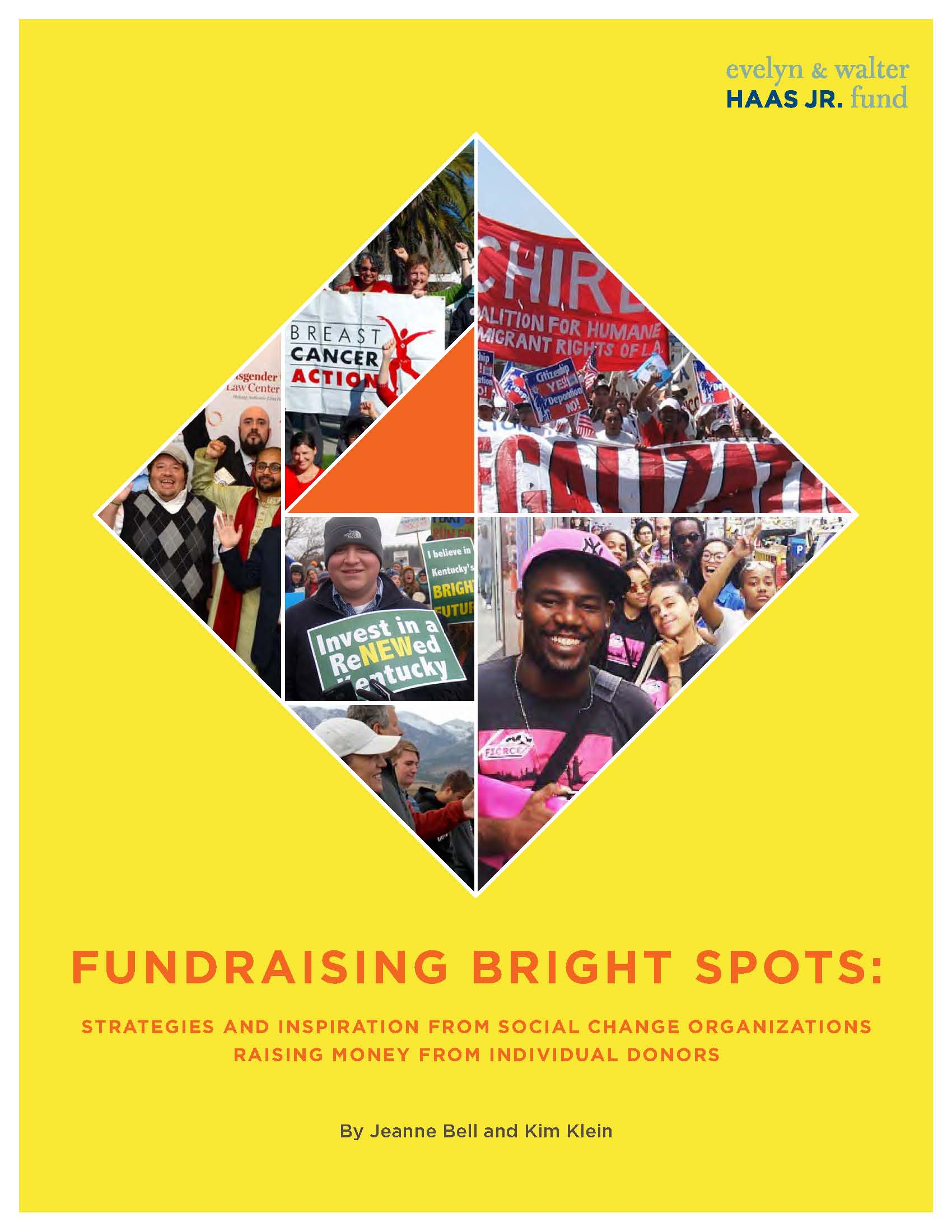 Fundraising Bright Spots Cover