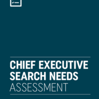 Chief Executive Search Needs Assessment