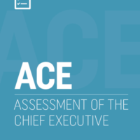 assessment chief executive